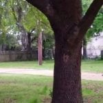 In wake of Walter Scott shooting, feds will review N. Charleston Police Department