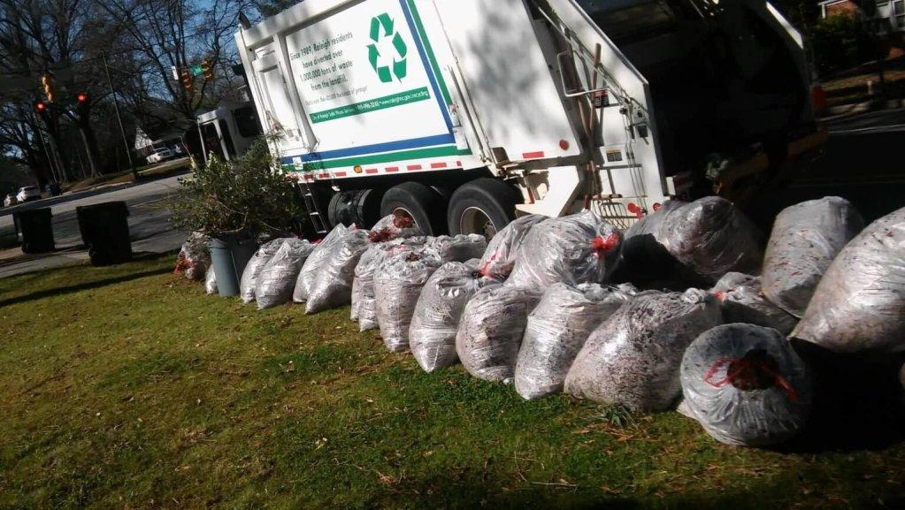 yard-waste-accumulated